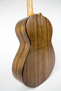 E Series Guitar